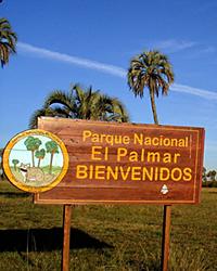 Aménagement de corridors biologiques pour le Vizcachas et sensibilisation des visiteurs du Parc National El Palmar à la préservation de l