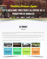 Les plantations forestières au service de la production de biomasse - Lot 1 Expérience Guyane ; Lot 2 Benchmark Brésil ; Lot 3 Impact ; Lot 4 AMO