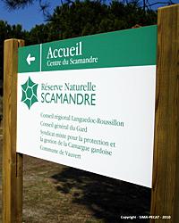 Réserve de la Scamandre – Développement d