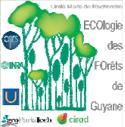 Écologie des forêts de Guyane